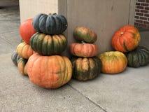 Pumpkins fall autumn seasonal background. Pile of Pumpkins on the ground fall autumn seasonal background royalty free stock photos
