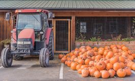 Pile of pumpkins beside tractor at farm stand in autumn stock photos