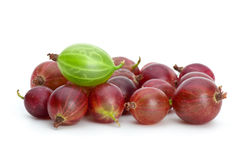 Pile of purple gooseberries and green on the top. Isolated on the white background Stock Image