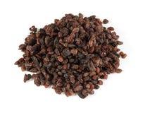 Pile of raisins Stock Image