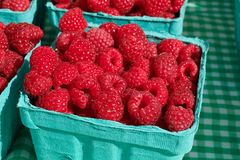 Pile of rasberries Royalty Free Stock Image