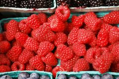 Pile of rasberries horizontal Royalty Free Stock Images