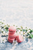 Pile of raspberry macaroons and cherry flowers Royalty Free Stock Photos