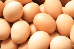 Pile of raw brown chicken eggs. Closeup royalty free stock image