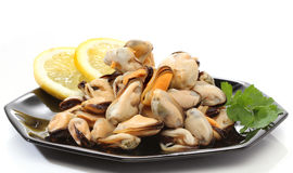 Pile of raw mussels. Over white Royalty Free Stock Photo