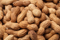 Pile of Raw Peanuts Royalty Free Stock Photos