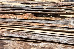 Pile of raw planks of pine wood Stock Photography