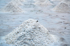 Pile of raw salt at salt field. salt agriculture before ssalt saturation process in factory. Imafe for background, copy space and backdrop Royalty Free Stock Photo