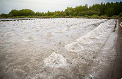 Pile of raw salt at salt field. salt agriculture before ssalt saturation process in factory. Imafe for background, copy space and backdrop Royalty Free Stock Photos