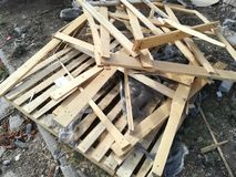 Pile of raw timber for recycling Stock Photo