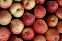 Pile of red apples from a market Royalty Free Stock Photos