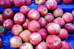Pile of red apples Stock Image