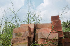 Pile of red bricks in dense grasses Royalty Free Stock Image