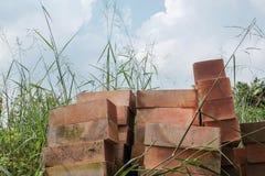 Pile of red bricks in dense grasses Royalty Free Stock Image