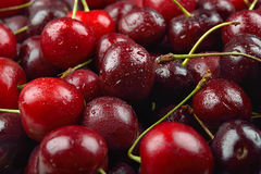 Pile of red cherries with drops of water on them, just removed f Stock Image