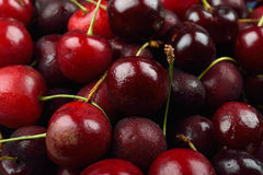 Pile of red cherries with drops of water on them Royalty Free Stock Photography