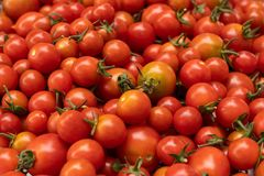 Pile of red cherry tomatoes royalty free stock photography