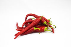 Pile of red chile peppers Royalty Free Stock Image
