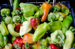 Red and green peppers Stock Images