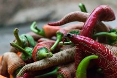 Pile of red, green, yellow peppers ready for use stock images