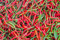 Pile of red hot chili. Can use as background stock photography