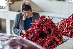 Pile of red hot chilly peppers Stock Photography