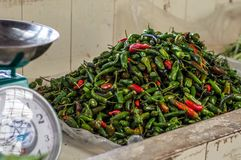 Pile of red hot chilly peppers Stock Photos