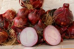 Pile of red onions Stock Photos