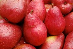 Pile of red Pears Royalty Free Stock Photo