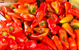 Pile of red peppers farmers market offer Royalty Free Stock Images