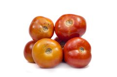 Pile of red tomatoes Stock Photography