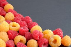 A pile red and yellow ripe natural fresh raspberries on black stone background. Close-up view. Copy space for text Stock Photography