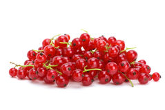 Pile of redcurrants Royalty Free Stock Image
