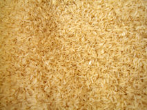 Pile of rice. Close up of pile of uncooked rice stock images