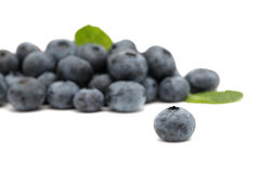 Pile of ripe blueberry Royalty Free Stock Photography