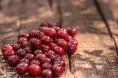A pile of ripe cherries on a wooden surface. Ripe cherry. Fresh juicy berries on the wooden surface. Healthy summer fruits royalty free stock photo