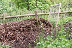 Pile with ripe compost and sieve. In a garden stock images