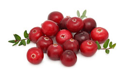 Pile of ripe cranberries (isolated) Stock Photo