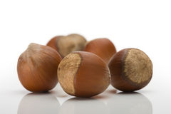 Pile of ripe crude hazelnuts Royalty Free Stock Images