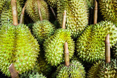 Pile of ripe durian Stock Photo