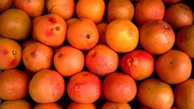 Grapefruit in fruit market stall. Pile of ripe grapefruit in an urban fruit market retail stand. Fruit stall image for advert Stock Images