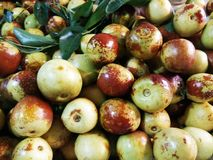 Pile of ripe jujube fruits. Pile of ripe jujube or Chinese date fruits royalty free stock photography