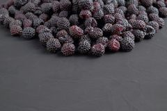 A pile of ripe natural black raspberries on dark background. Close-up view. Copy space for text Stock Photos