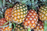 Pineapple. A pile of ripe pineapple Stock Image
