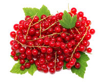 Pile of ripe redcurrant berries on green leaves (isolated) Stock Photos