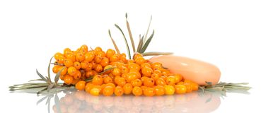 A pile of ripe sea-buckthorn berries, leaves and soap isolated o Royalty Free Stock Photo