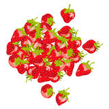 Pile of ripe strawberries Stock Image