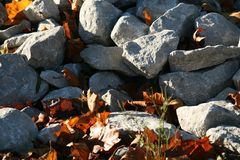 Pile of rocks with the sun beating down. A pile of rocks with the sun beating down on them on a fall day. A few fallen leaves scattered around Stock Photos