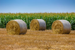 Pile of rolled hay Royalty Free Stock Photo