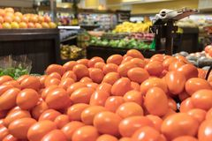Roma tomatoes in grocery store stock image